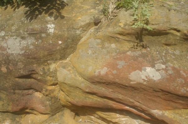 pierre rouge et lichens