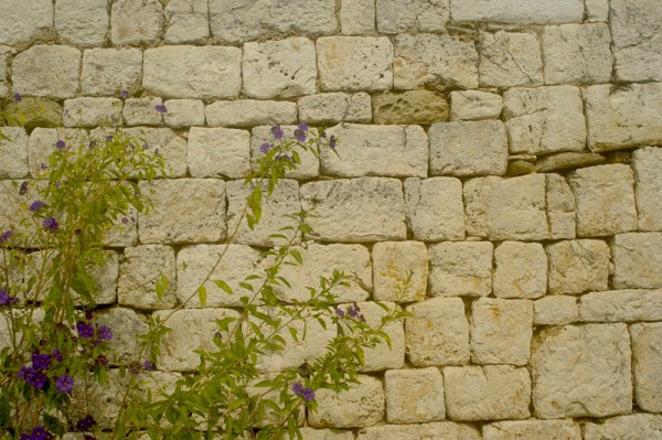 mur-reduite